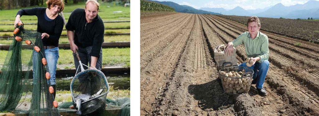 genusswirt-kaernten-regionale-lieferanten-forellen-kartoffel